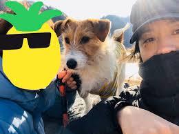 嫁と犬と松蔭寺