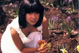 宮崎美子の若い頃