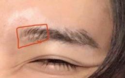 目黒蓮の眉毛の拡大画像